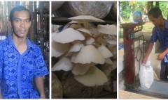 Pengusaha difabel di bisnis jamur
